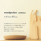 woodpecker exhibition