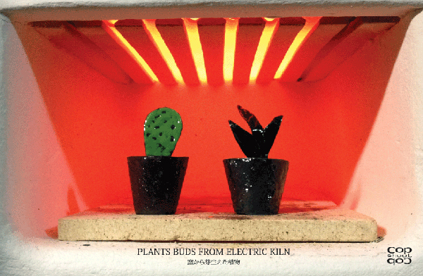 PLANTS BUDS FROM ELECTRIC KILN