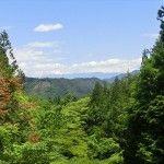 五段の滝付近からの景色