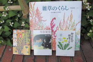 続・『チルチンびと』夏号の特集は、「草編みびと」です