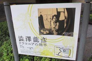 『澁澤龍彦   ドラコニアの地平』展
