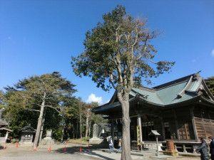最初は鶴谷八幡宮
