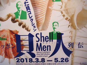 『ニッポン貝人列伝 時代をつくった貝コレクション』展