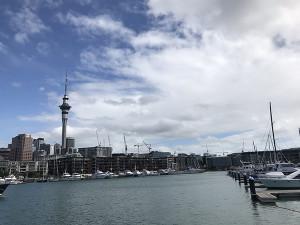 ニュージーランド(オークランド)