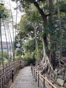 天神坂。この坂の上が嘉納治五郎の別荘と柳宗悦邸の跡地