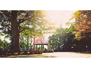 ひだまりの場所に集う  / 長崎公園・丸馬場
