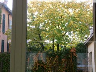 モザイク工房Kokomosaicoの窓からの景色
