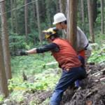 参加者に安全な伐倒の講習をする筆者(手前)
