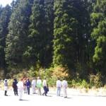 皆伐を回避した地域の共有林
