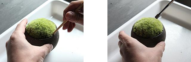 軽く濡らしたキッチンペーパーなどを被せ、手のひらで押さえるように密着させてもよい。