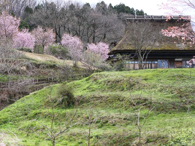 古民家は旧鳥越村より移築されました。