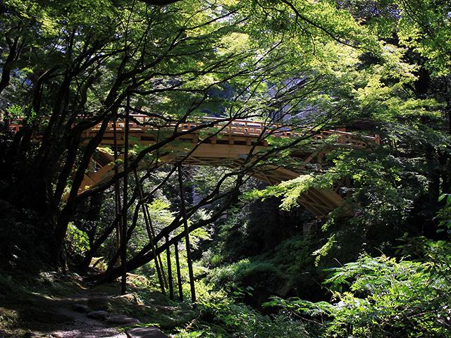 遊歩道は下流の黒谷橋からこのこおろぎ橋まで約1.3km続いている。