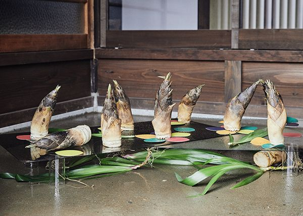 竹の子、しゃが、散華紙、ガラス板、ガラス筒