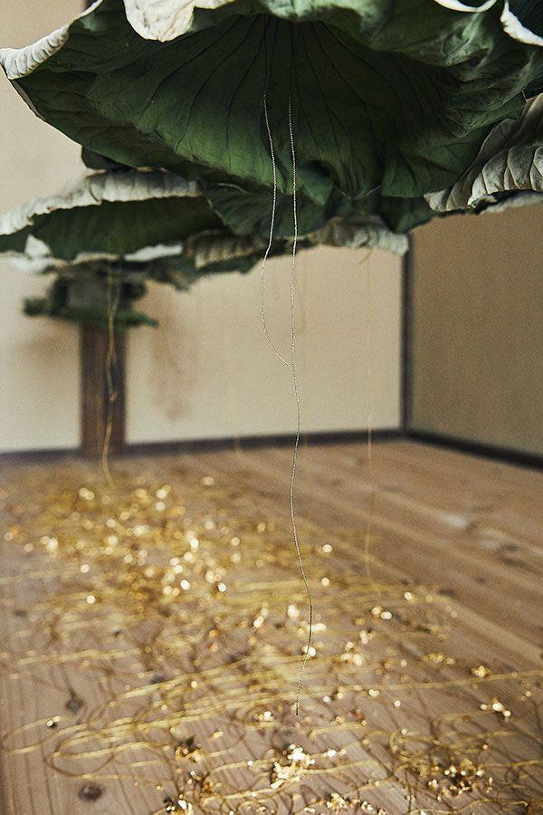 蓮は工事の為に放棄された蓮畑から、金糸、洋箔