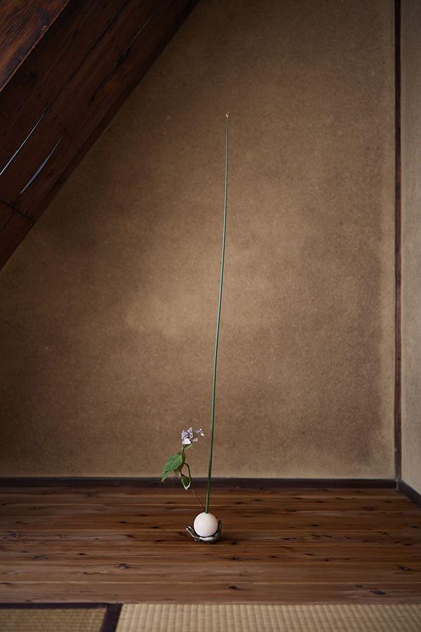花材:太藺(ふとい)、甘茶 器:毛利武士郎《手》、テニスボール