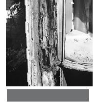 シロアリに食害されスカスカになった構造材。