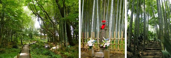 適度な間隔に整理され、光の差し込む明るい竹林です。お地蔵まさも安らかな平和的景観。