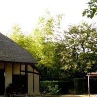 植物と土で出来た茅葺きの民家と背後の竹林