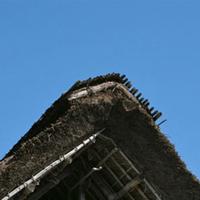 分厚い屋根を支えるのも、上から押さえるのも竹の役目です