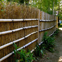 竹の稈と枝を利用した竹垣。孟宗竹が使われています