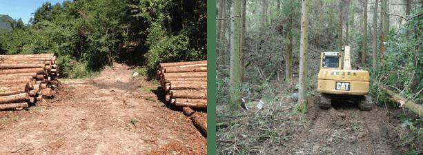 (左)作業道と作業路(右)作業路開設