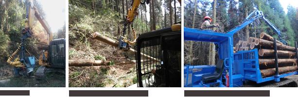 (左)ハーベスタ(中央)ハーベスタで造材作業を行う(右)フォワーダ―で積み込み作業中