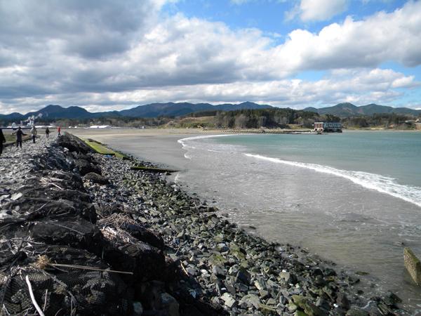 宮城県気仙沼市の小泉近くの海岸は、砂が戻りつつある。現行計画では砂浜はすべて防潮堤でおおわれ消失する」(撮影:日本自然保護協会)