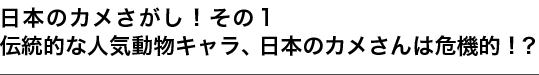 日本のカメさがし!その1 伝統的な人気動物キャラ、日本のカメさんは危機的!?