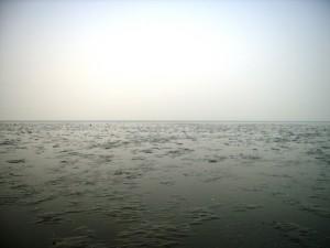 PM2.5にかすむ中津干潟(2013年12月5日)
