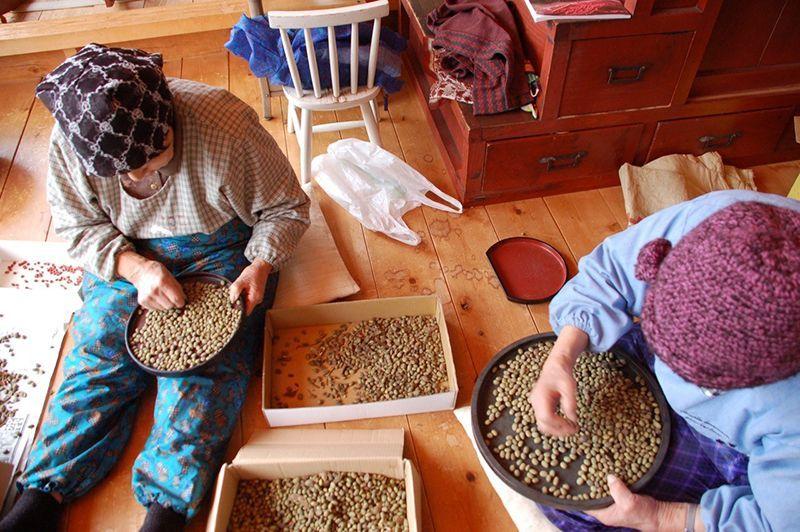 豆を選りながらばあちゃん達の話に耳を傾ける。栽培、貯蔵、料理法に時々うわさ話も。