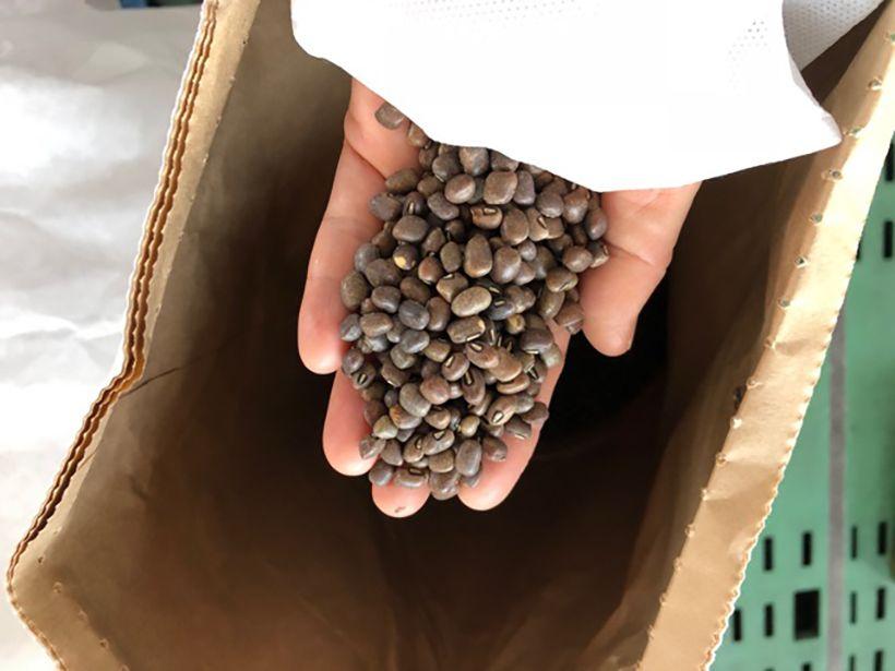 価格競争のため海外産の小豆に似た豆で作られる和菓子が増えているという。