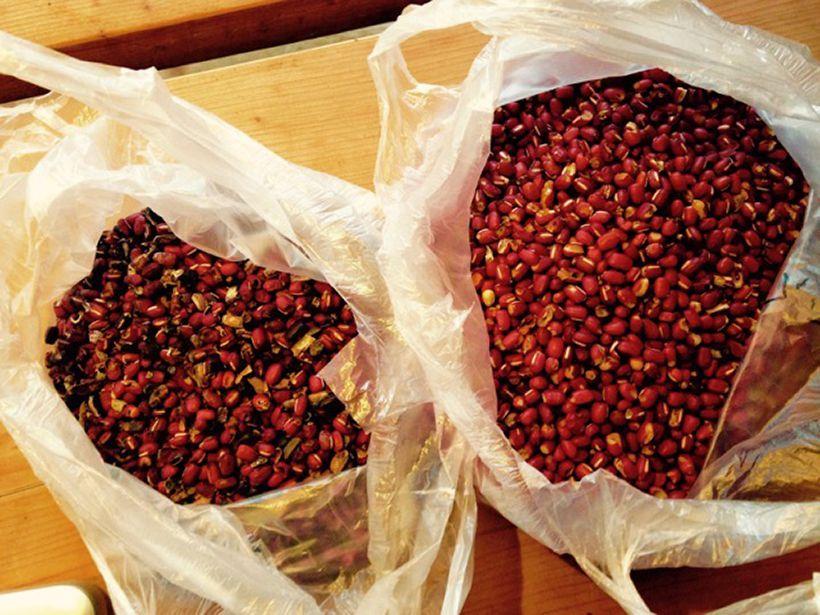 綺麗な豆、欠けたりしているけれど今すぐ煮て食べれば大丈夫な豆(右)、畑に還す豆(左)と3つに分ける。