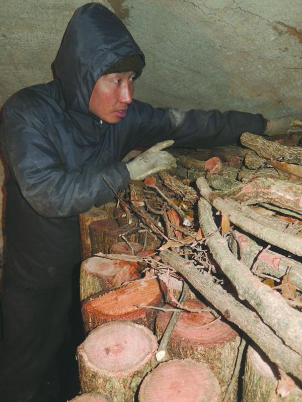 炭を焼く際に窯の中に丸太を立ててならべていく大野さん。ドーム状の丸い天井部分には丸太が燃え尽きて灰にならないように小枝が被せられる。