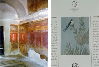 [左]2000年余りたっても色彩鮮やかな人物像のフレスコ画[右]ポンペイに保存された植物を描いたフラスコ画