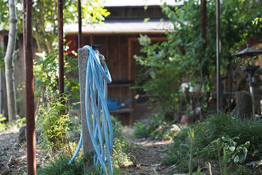 絵に描いたようなお庭です