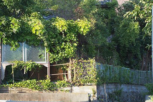 外観や屋根、柱の状況など総合的に特定空き家かどうか判断されます