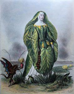 グランヴィルの睡蓮。1857年のゴネ出版社からの初版後版。