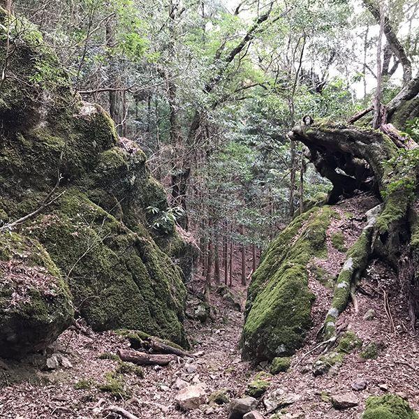 吉ヶ平の岩屋